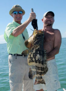 Grouper Wrassling in Flamingo