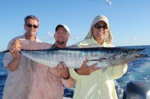 wahoo - offshore - fishing charters - Tavernier