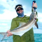 Cobia - flamingo - fishing - 2012