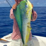 Dorado - key largo - offshore fishing - 2015