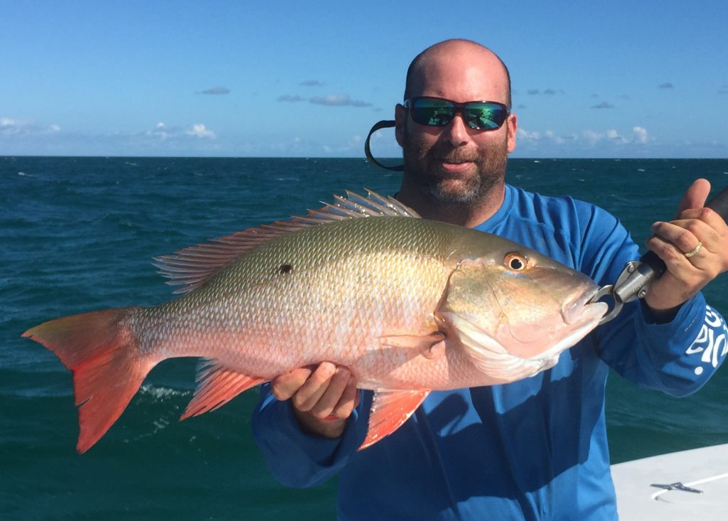 Mutton snapper - key largo - offshore - 2015