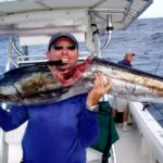 Shark attack - sailfish - key largo - offshore fishing - 2006