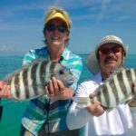 Sheepshead - Tavernier - flamingo- 2012