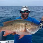 Snapper - reef - bottom fishing - key largo - 2013