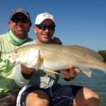 Tailing redfish - flamingo - flats fishing - 2013