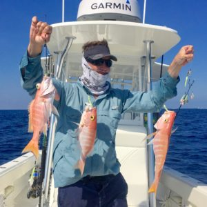snapper - deep drop - gulf stream - fishing