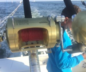 fishing - shimano - islamorada - marlin